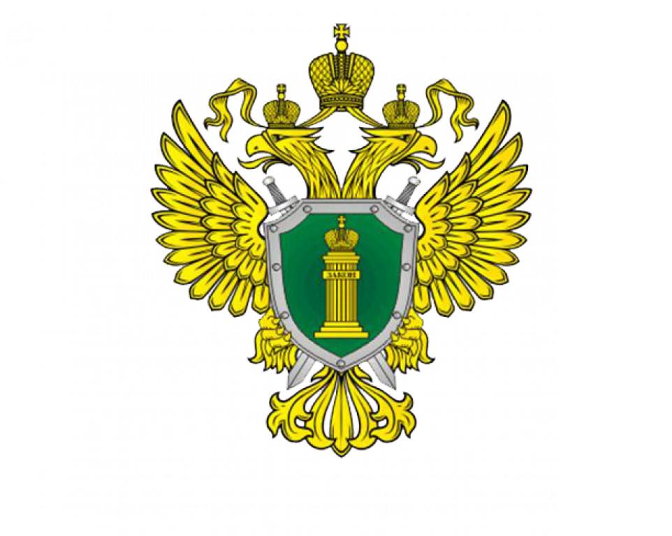 https://go-pevek.ru/images/news2019/prokuratura.jpeg
